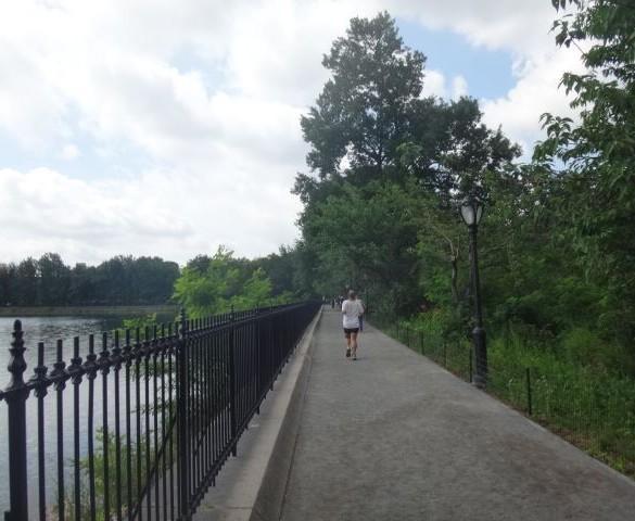 Central Park: um oásis em Nova Iorque