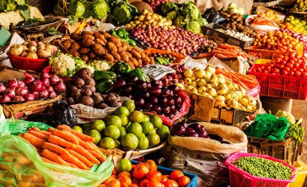 Alimentos orgânicos: benefícios à saúde e ao meio ambiente