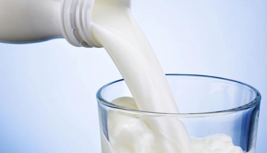 Nutrição:Mitos e Fatos sobre o Leite