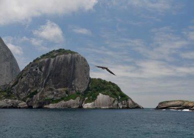 Ilhabela recebe mergulhadores com festival e visitas a Alcatrazes entre os dias 6 a 8